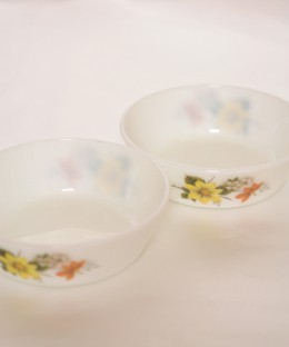 JAJ PYREX Autumn Glory / Cereal Bowl 2 Pieces SET