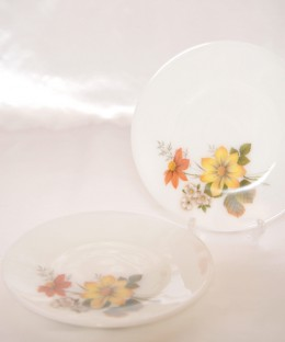 JAJ PYREX Autumn Glory / 21.5cm Plate 2 Pieces SET