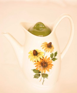 Midwinter Daisy Time / Coffee Pot (貫入有り)